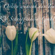 Ostern, Frohes Osterfest, Schneppenheim, Modellbau, Gießerei, Styropormodelle, Gießmodellbau